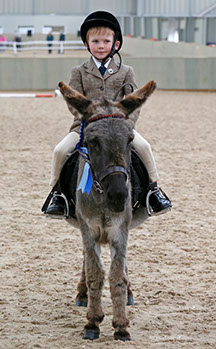DBS - Reserve Champion Young Rider - Thomas Sykes